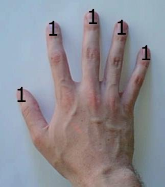 Base-1 computation on a human hand: all fingers count as 1 unit